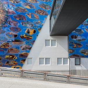 Mikkelin Perhetalon julkisivua ja taidetta